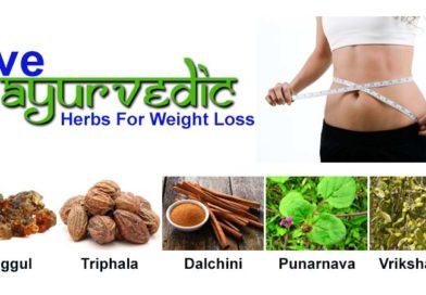 Ayurvedic medicine for weight loss