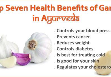 Best Seven Health Benefits of Garlic in Ayurveda